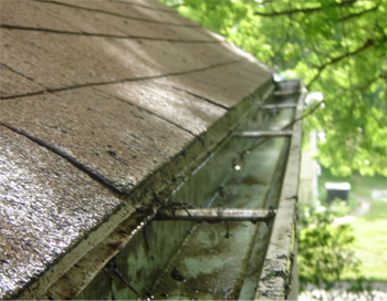 gutters after cleaning